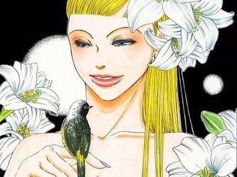 花神 白百合の画像