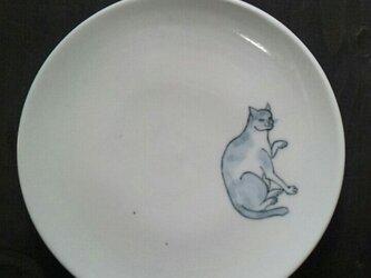 染付5寸猫皿7の画像