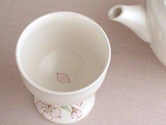 色絵金彩足付盃 桜の画像