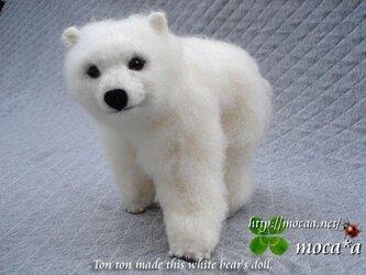 シロクマのぬいぐるみ★白熊ぬいぐるみ♪大地君Polar Bearの画像