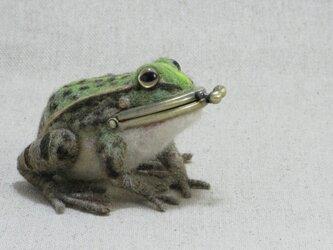 トノサマガエルのがま口の画像