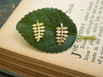 Luteruピアス [山椒の葉] マットシルバーの画像