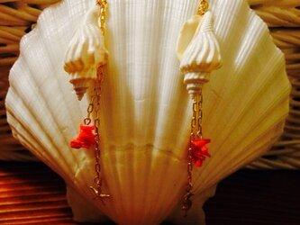 巻貝と赤珊瑚のロングピアスの画像