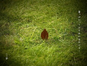 言葉*『葉っぱだって立ち上がるのです!』2枚組の画像