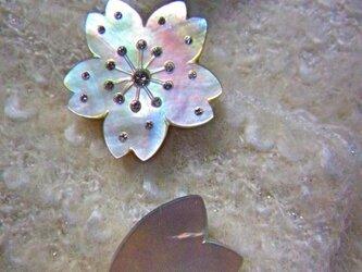 桜 ブローチセットの画像