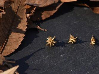 星の一粒ゴールドカラーピアスMの画像