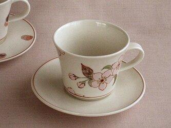色絵金彩デミタス碗皿 桜の画像