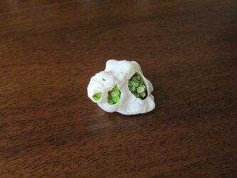 [さい様ご依頼品]貝がら ミニチュア 春Green3の画像