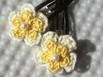 お花のヘアピンセットの画像