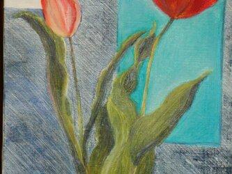 春の風の画像