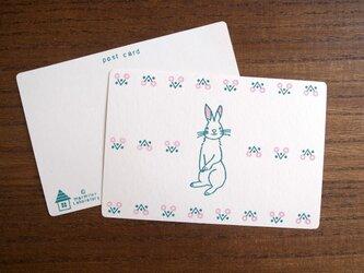 ウサギのはがき *3枚セット*の画像