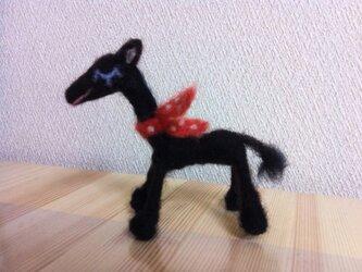 Ponyの画像