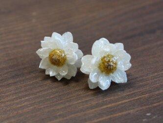 【再販】hayashi様ご予約品 花かんざしのピアスの画像