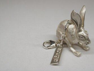 jack rabbit pendantの画像