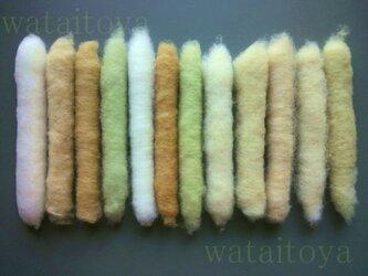 無染色・自家自然栽培綿の篠(手紡ぎ用綿)10本の画像