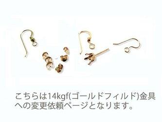 14kgf(ゴールドフィルド)金具変更依頼ページの画像