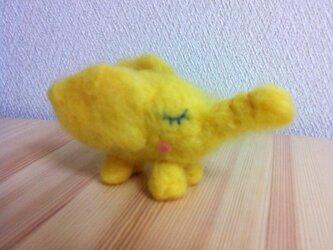 Palupalu (yellow)の画像