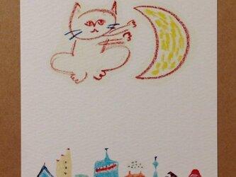 ポストカード 三日月と猫 2枚の画像