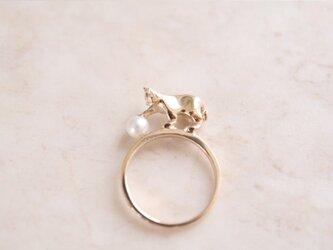 パールにじゃれるネコリング【IGNITE Jewelry】の画像