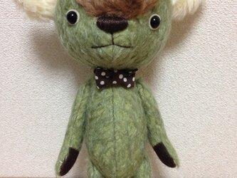 kiwiの画像