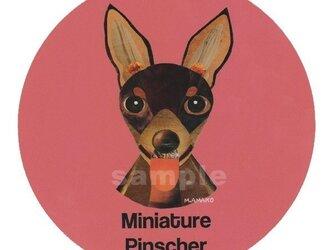 ミニチュア ピンシャー/ブラウン《犬種名ステッカー/小型犬》の画像