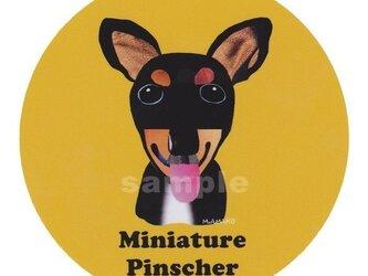 ミニチュア ピンシャー《犬種名ステッカー/小型犬》の画像