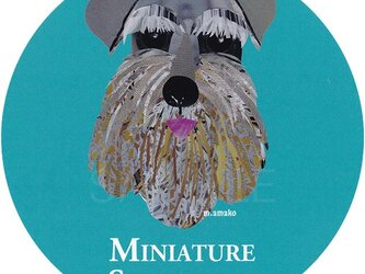 ミニチュア シュナウザー《犬種名ステッカー/小型犬》の画像
