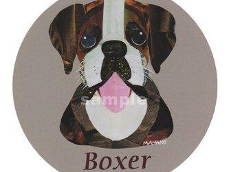 ボクサー《犬種名ステッカー/中型犬》の画像
