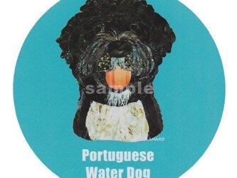 ポーチュギーズ ウォータードッグ《犬種名ステッカー/中型犬》の画像