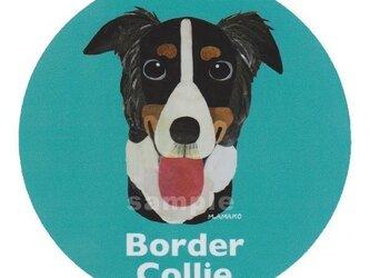 ボーダー コリー/トライカラー《犬種名ステッカー/中型犬》の画像