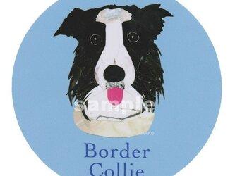 ボーダー コリー《犬種名ステッカー/中型犬》の画像