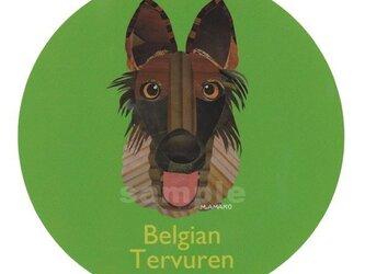 ベルジアン タービュレン《犬種名ステッカー/大型犬》の画像