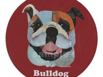 ブルドッグ《犬種名ステッカー/中型犬》の画像
