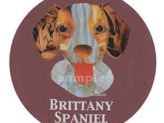 ブリタニー スパニエル《犬種名ステッカー/中型犬》の画像