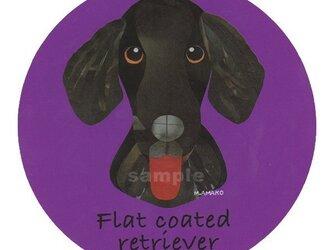 フラット コーテッド レトリバー《犬種名ステッカー/大型犬》の画像