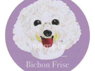 ビション フリーゼ《犬種名ステッカー/小型犬》の画像