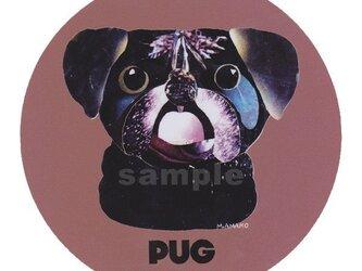 パグ/黒《犬種名ステッカー/小型犬》の画像