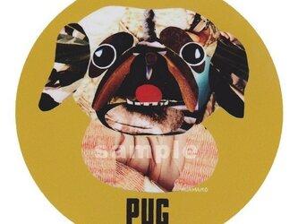 パグ/フォーン《犬種名ステッカー/小型犬》の画像
