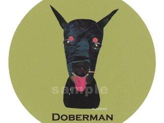 ドーベルマン《犬種名ステッカー/大型犬》の画像