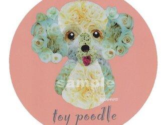 トイ プードル/薔薇《犬種名ステッカー/小型犬》の画像