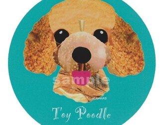 トイ プードル/アプリコット耳長《犬種名ステッカー/小型犬》の画像