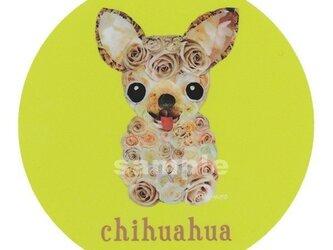 チワワ/薔薇《犬種名ステッカー/小型犬》の画像