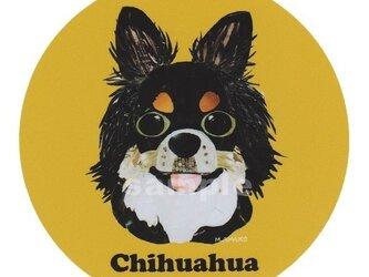チワワ/トライカラー《犬種名ステッカー/小型犬》の画像