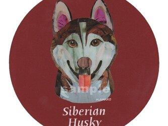 シベリアン ハスキー/レッド《犬種名ステッカー/中型犬》の画像