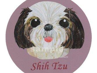 シーズー《犬種名ステッカー/小型犬》の画像