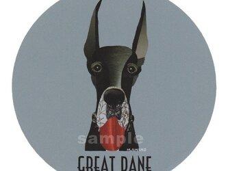 グレート デーン《犬種名ステッカー/大型犬》の画像