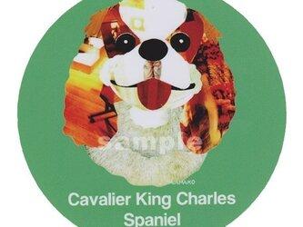 キャバリア キングチャールズ スパニエル《犬ステッカー/小型犬》の画像
