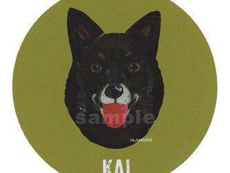 甲斐犬《犬種名ステッカー/中型犬》の画像