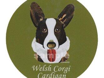 ウェルシュ コーギー カーディガン《犬種名ステッカー/小型犬》の画像