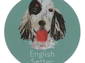 イングリッシュ セター《犬種名ステッカー/大型犬》の画像